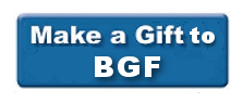 one-time-bgf